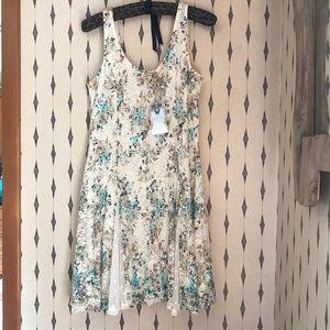 NWT Disney Cinderella Lace Printed Dress, Sz Large